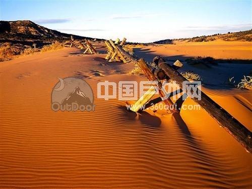 沙漠 桌面 500_375